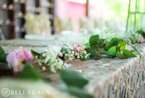 Bellagala Photography H2